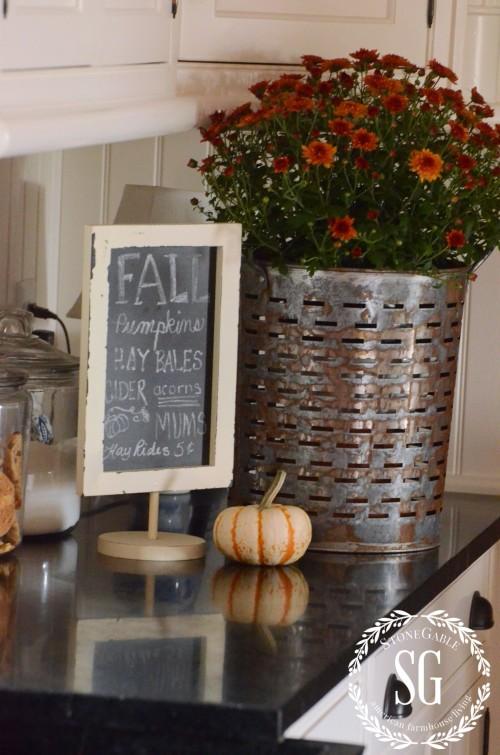 FALL HOME TOUR-bucket of mums-stonegableblog.com