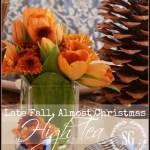 LATE FALL, ALMOST CHRISTMAS HIGH TEA