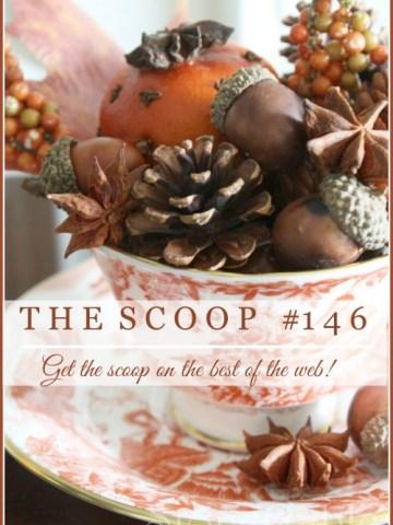 THE SCOOP #146
