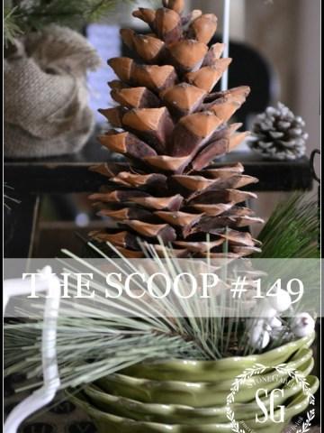 THE SCOOP #149