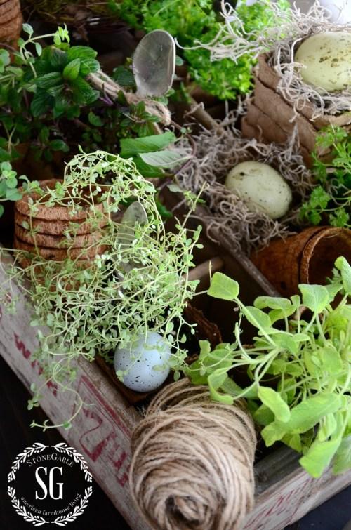 HOW TO ADD SEASONAL DECOR TO YOUR HOME-indoor herb garden-stonegableblog.com