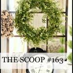 THE SCOOP #163