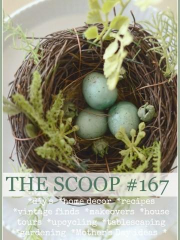 THE SCOOP #167
