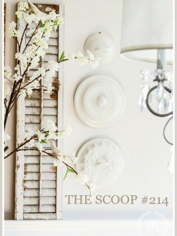 THE SCOOP #214