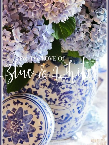FOR THE LOVE OF BLUE AND WHITE