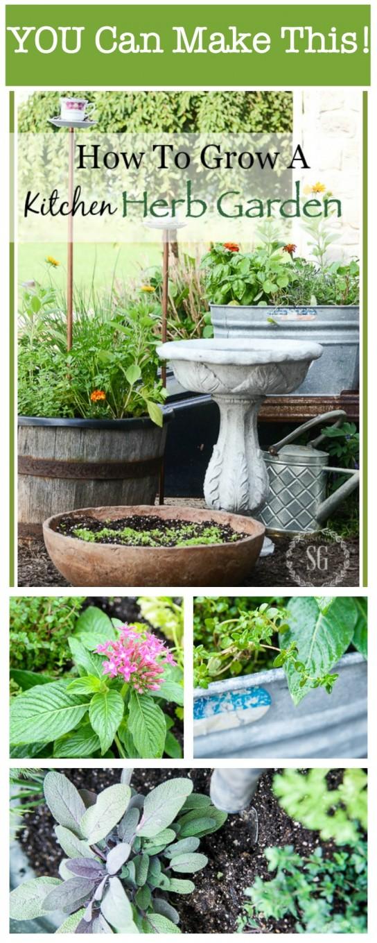 how to grow a kitchen herb garden - stonegable