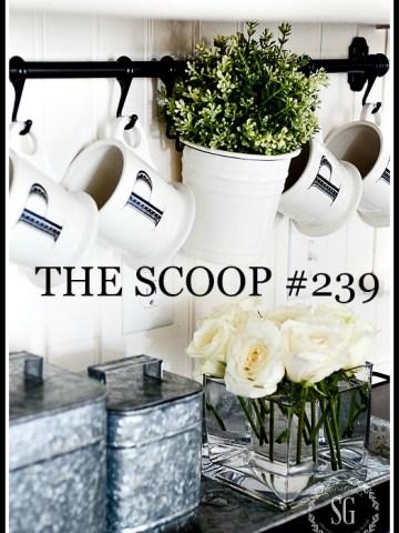 THE SCOOP #259