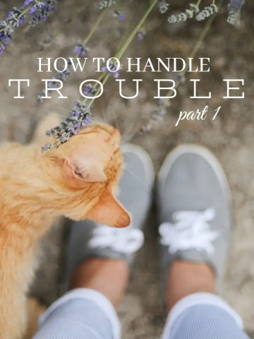 HOW TO HANDLE TROUBLE, PART 1