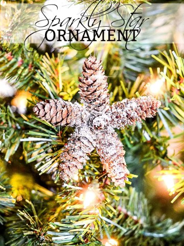 SPARKLY PINECONE STAR ORNAMENTS