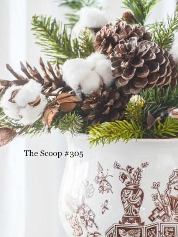 THE SCOOP #305