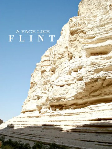 A FACE LIKE FLINT