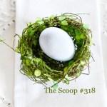 THE SCOOP #318