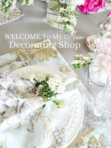 WELCOME TO MY NEW DECORATING SHOP!