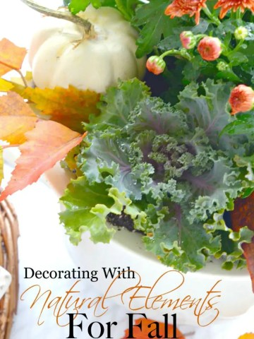 USING NATURAL ELEMENTS IN FALL DECORATING AND $150.00 GIVEAWAY