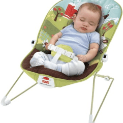 Infant Bouncy Chair Wicker Cushion Covers Stone Harbor Crib Beach Rental Seat
