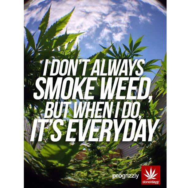 Weed Girl Out Door Wallpaper Mobile Wallpaper For Stoners Stoner Pictures Stoner Blog