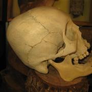 Prehistoric Peru 017