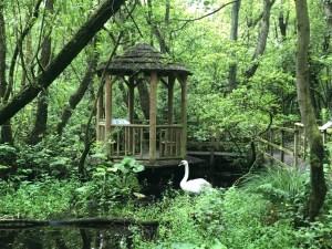 Stonyford Gardens 5