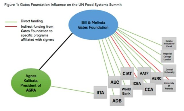 un-food-systems-summit