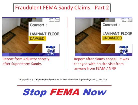 Fraud Laminant