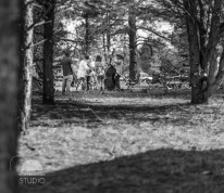 Road to Rich's 2016: Bands appear in the woods