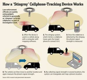 how-a-stingray-works