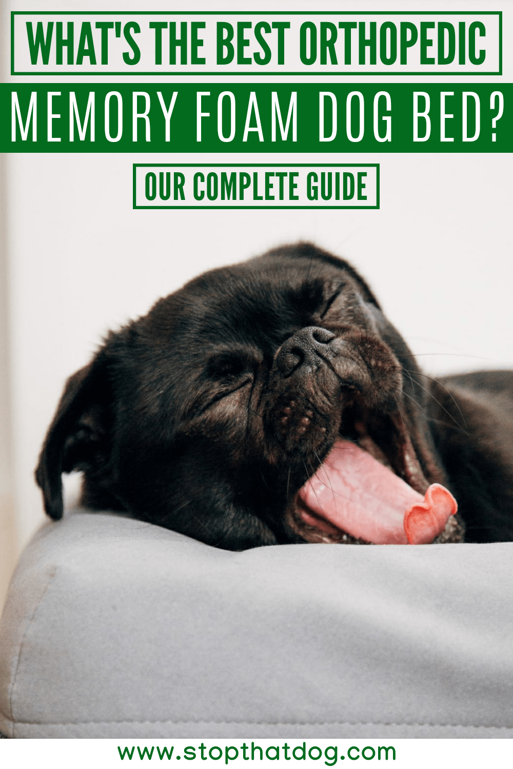 Want the best orthopedic memory foam dog bed? If so, this guide reveals the best options on the market. These won\'t let you down. Come take a look.