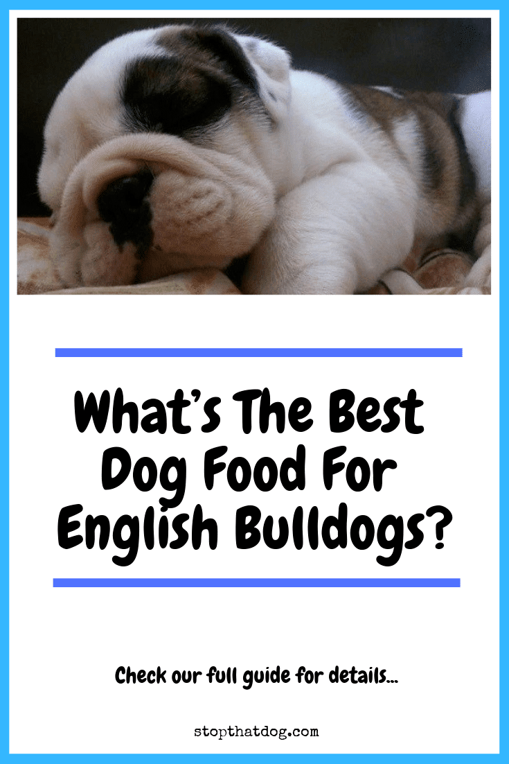 Looking to buy the best dog food for English Bulldogs? If so, our guide reveals many of the best and highlights the top 5 based on dog owner reviews.