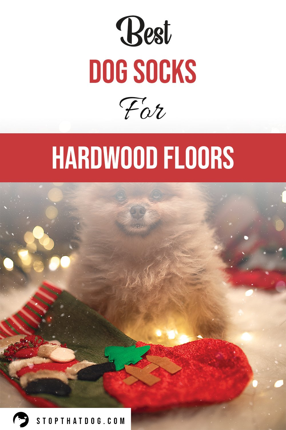 Looking to buy some socks for your dog? If so, our guide reveals many of the top options on the market. Stop your dog slipping on hardwood floors.