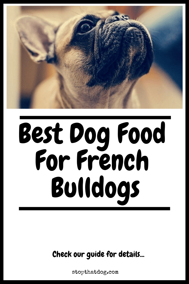 Looking to buy the best dog food for French Bulldogs? If so, our guide reveals many of the best options and highlights the top 5 based on buyer feedback.