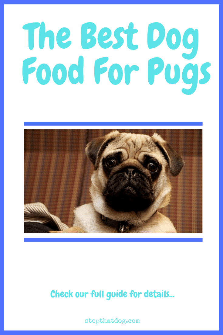 Looking to buy the best dog food for pugs? If so, our guide highlights several of the best options available and reveals the top 5 based on buyer reviews.