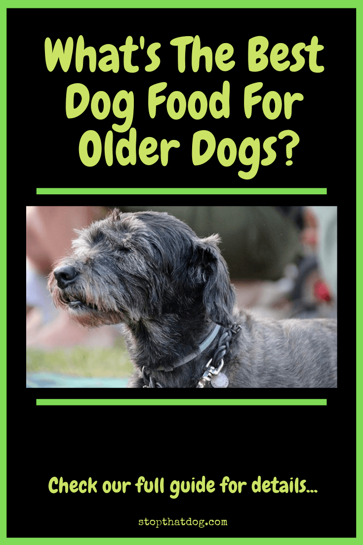 What S The Best Dog Food For Older Dogs Stop That Dog