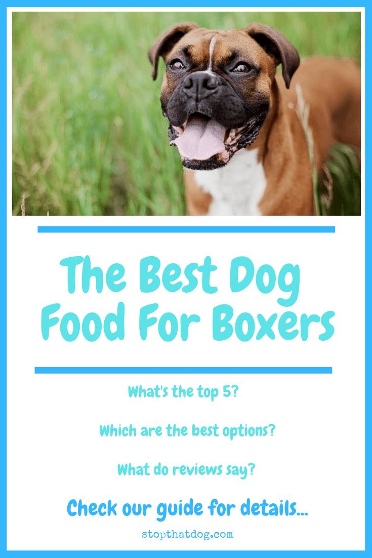 Interested in finding the best dog food for boxers? If so, our guide reveals many of the best options and highlights the top 5 based on dog owner reviews.