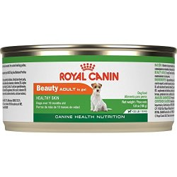 What's The Best Canned Wet Dog Food? Our Ultimate Guide 7