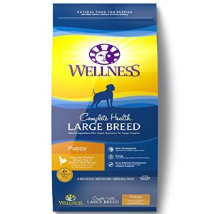 What's The Best Dog Food for German Shepherds? 16