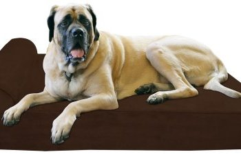 What's The Best Dog Bed For Large Dogs? Our Ultimate Guide 1