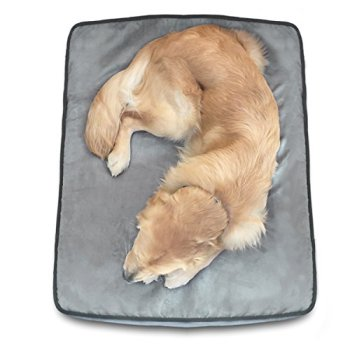 What's The Best Dog Bed For Large Dogs? Our Ultimate Guide 14