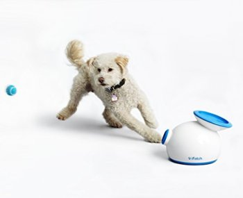 What Are The Best Interactive Dog Toys? Our Complete Guide 2