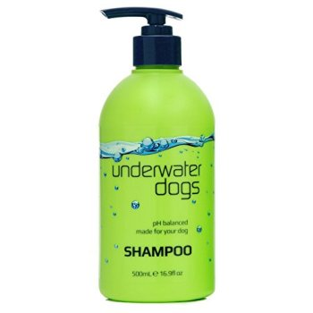 What's The Best Dog Shampoo For Odor? 13