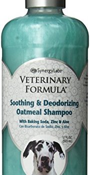 What's The Best Dog Shampoo For Odor? 9