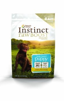 What's The Best Dog Food For Great Danes? 17