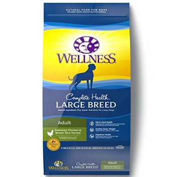 What's The Best Dog Food For Great Danes? 7