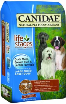 What's The Best Dog Food For Large Breeds? Our Top Picks 7