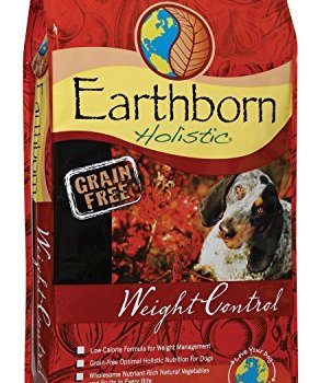 What's The Best Low Calorie Dog Food? 6