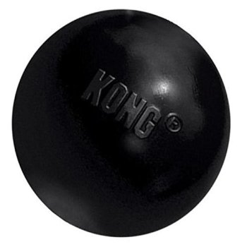 What Are The Best Kong Dog Toys? Our Top Picks 5