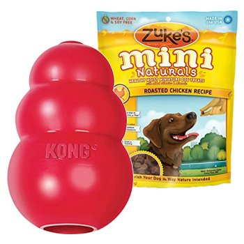 What Are The Best Kong Dog Toys? Our Top Picks 1