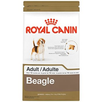 What's The Best Dog Food for Beagles? 2