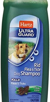 What's The Best Flea Shampoo For Dogs? 4