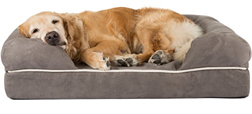 this bed from friends forever comes in several sizes and one of the unique aspects of this bed is the unique shape which gives your dog plenty of comfy