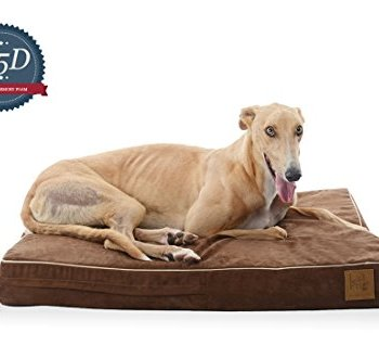 What's The Best Orthopedic Memory Foam Dog Bed? Our Complete Guide 11